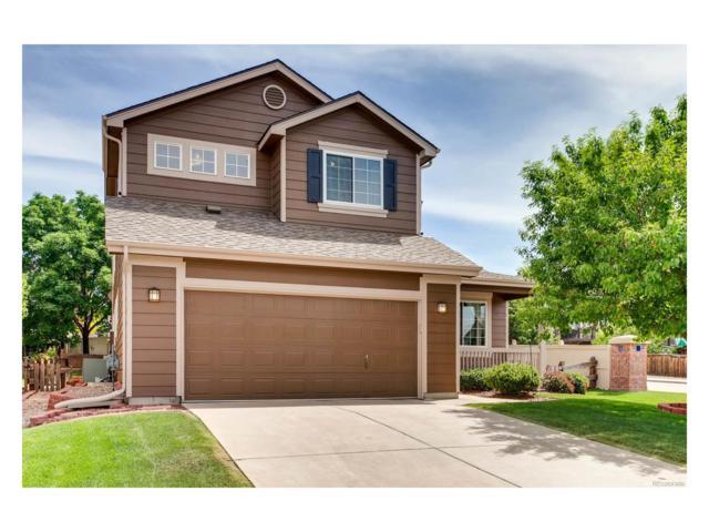 10190 Royal Eagle Lane, Highlands Ranch, CO 80129 (#6249462) :: The Peak Properties Group