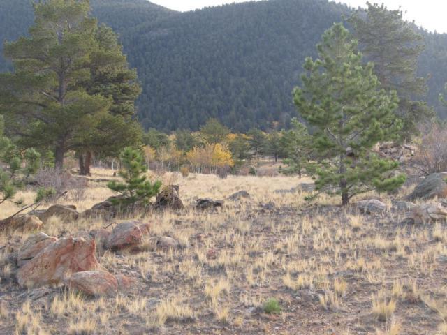 7223 Boulder Road, Hartsel, CO 80449 (MLS #6253473) :: 8z Real Estate