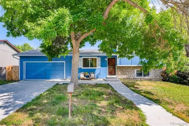 8136 Explorador Calle, Denver, CO 80229 (MLS #6254500) :: The Sam Biller Home Team