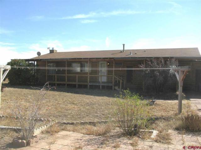 351 Huerta Court, Crestone, CO 81131 (#6255225) :: The Heyl Group at Keller Williams