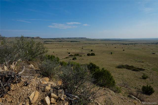 Lot 14 Apache Creek Ranches, Walsenburg, CO 80189 (#6255376) :: The HomeSmiths Team - Keller Williams