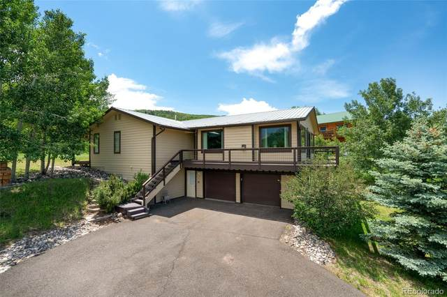 29865 Rock Point Trail, Oak Creek, CO 80467 (#6256774) :: Bring Home Denver with Keller Williams Downtown Realty LLC