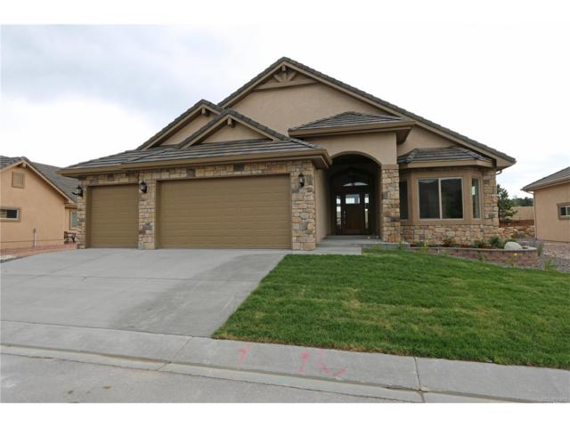 1430 Symphony Heights, Monument, CO 80132 (MLS #6257351) :: 8z Real Estate