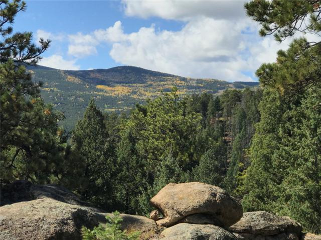 32734 Lodgepole Circle, Evergreen, CO 80439 (#6259442) :: The Pete Cook Home Group