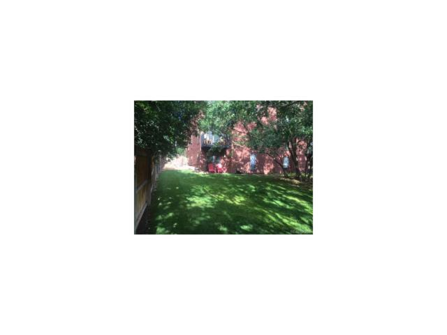 2501 Cisar Court 1B, Glenwood Springs, CO 81601 (MLS #6263484) :: 8z Real Estate
