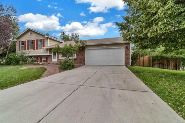 1143 Bristlecone Place, Loveland, CO 80538 (#6265702) :: The Heyl Group at Keller Williams