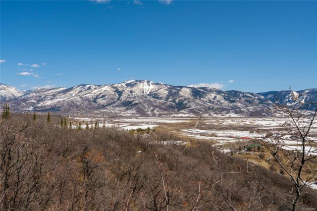 30870 Fawn Lane, Steamboat Springs, CO 80487 (#6269176) :: The DeGrood Team