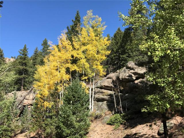 32744 Lodgepole Circle, Evergreen, CO 80439 (MLS #6271704) :: 8z Real Estate