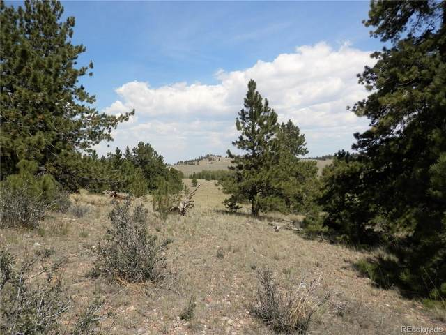 5447 Ranch Road, Hartsel, CO 80449 (#6272522) :: Venterra Real Estate LLC