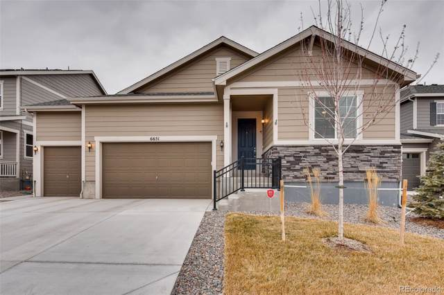 6651 Leilani Lane, Castle Rock, CO 80108 (#6273494) :: Wisdom Real Estate