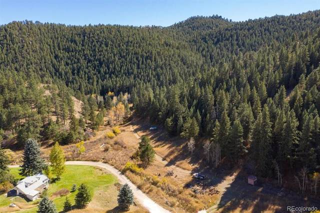 28690 Stagecoach Boulevard, Evergreen, CO 80439 (#6276490) :: Sultan Newman Group