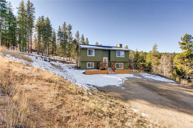 12019 Circle Drive, Conifer, CO 80433 (#6280324) :: The Heyl Group at Keller Williams