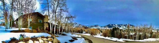 60 Valverdant Circle, Steamboat Springs, CO 80487 (#6280467) :: The Dixon Group