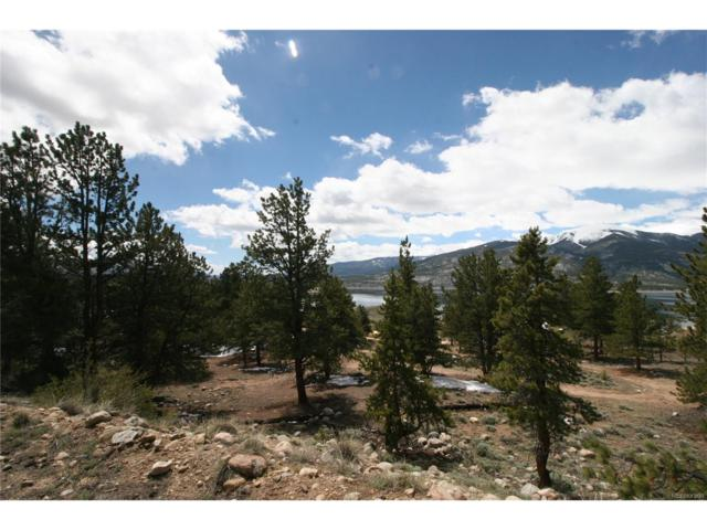 368 Parry Peak Drive, Twin Lakes, CO 81251 (#6281736) :: Bring Home Denver