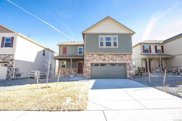 5988 Sun Mesa Circle, Castle Rock, CO 80104 (#6281991) :: House Hunters Colorado