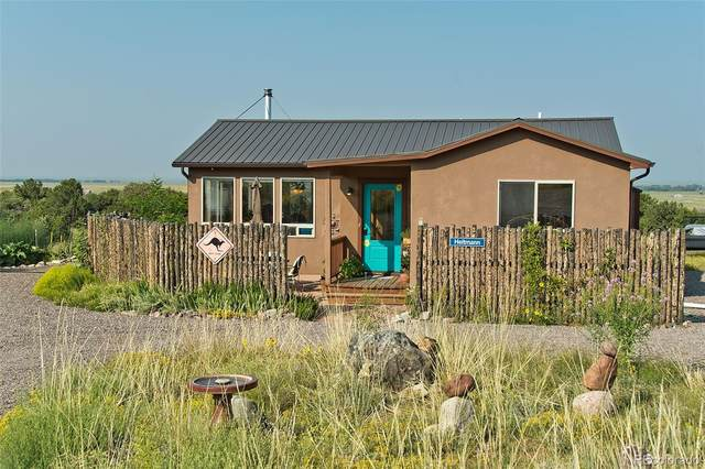 3766 S Carefree Way, Crestone, CO 81131 (#6283774) :: The Colorado Foothills Team | Berkshire Hathaway Elevated Living Real Estate