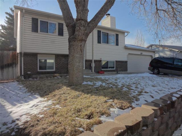 6347 S Johnson Street, Littleton, CO 80123 (MLS #6284984) :: 8z Real Estate