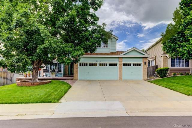 9720 W 97th Drive, Westminster, CO 80021 (#6285158) :: The HomeSmiths Team - Keller Williams