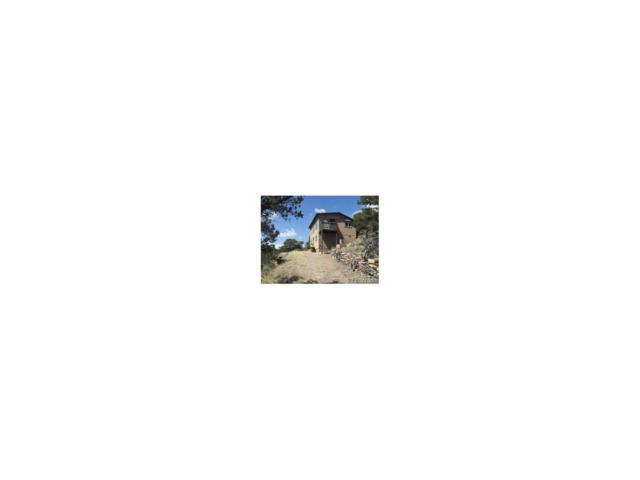 303 Bison Circle, Cotopaxi, CO 81223 (MLS #6290106) :: 8z Real Estate