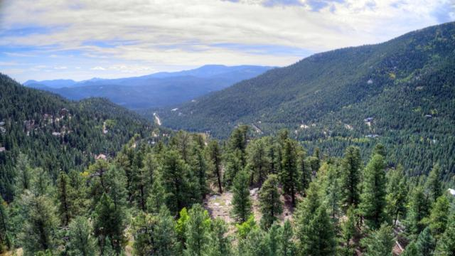 000 Snyder Mountain Road, Evergreen, CO 80439 (#6292217) :: The Peak Properties Group