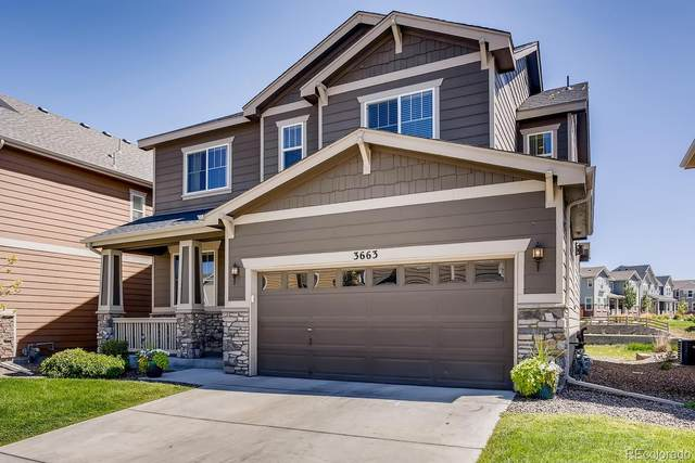 3663 E 141st Place, Thornton, CO 80602 (#6294851) :: The Heyl Group at Keller Williams