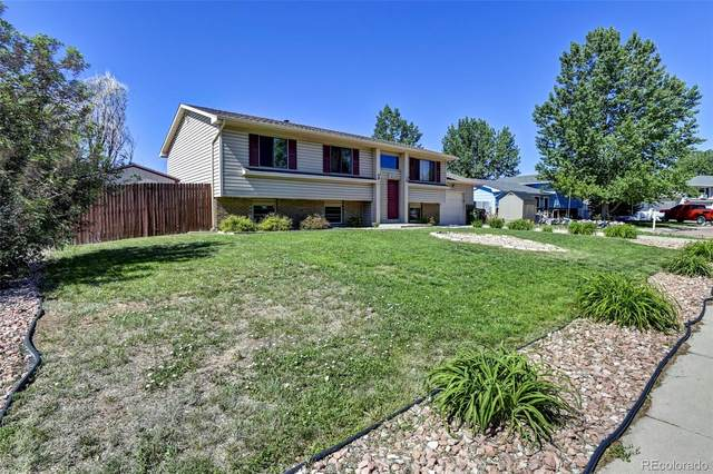 7313 Old Pioneer Trail, Fountain, CO 80817 (#6296650) :: The Griffith Home Team