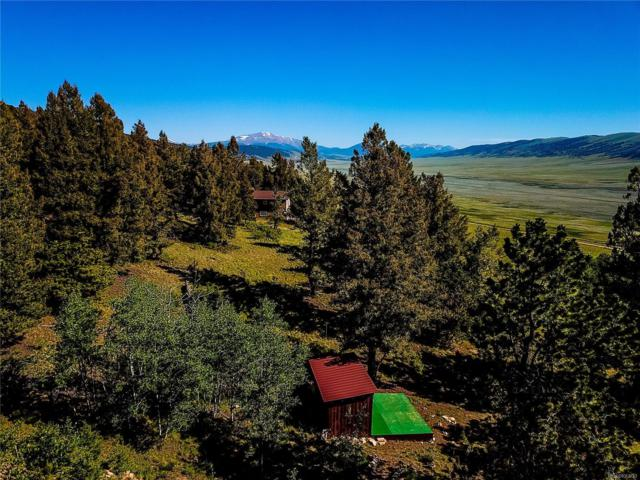 1280 Redhill Road, Fairplay, CO 80440 (#6297493) :: Wisdom Real Estate