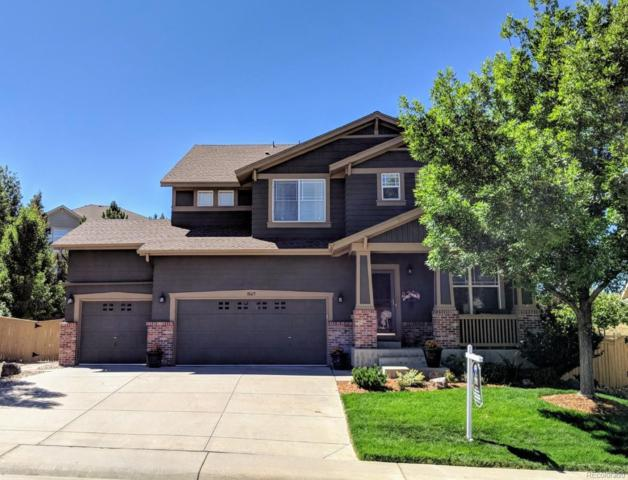 10615 Redcone Way, Highlands Ranch, CO 80130 (#6298114) :: The Peak Properties Group