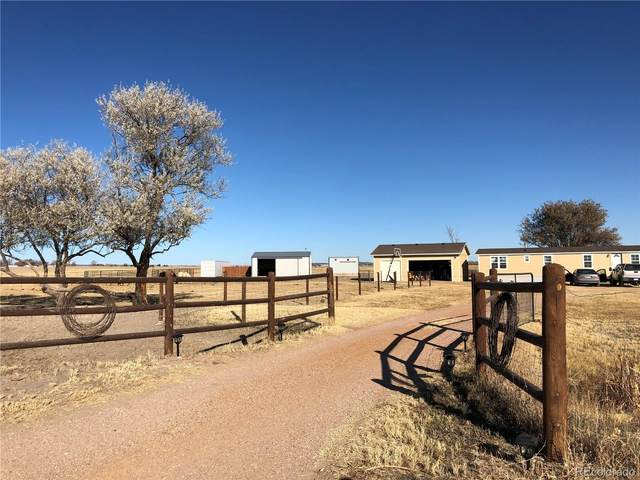 20560 Sahara Drive, Peyton, CO 80831 (#6301118) :: Wisdom Real Estate