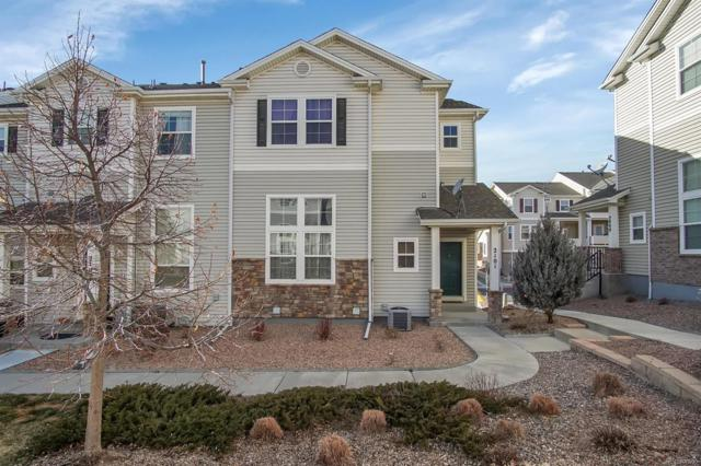 2101 Babbling Stream Heights, Colorado Springs, CO 80910 (#6302684) :: House Hunters Colorado