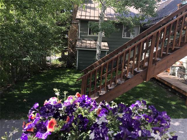 115 6th Avenue, Ouray, CO 81427 (#6302722) :: HomePopper