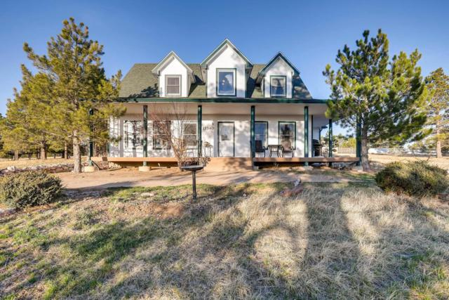 17340 Barnwood Drive, Peyton, CO 80831 (#6303183) :: Structure CO Group