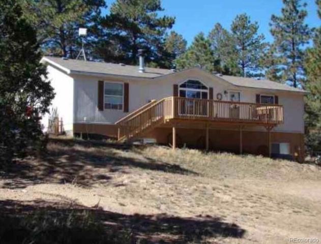 772 Texas Creek Lane, Cotopaxi, CO 81223 (#6303415) :: Bring Home Denver
