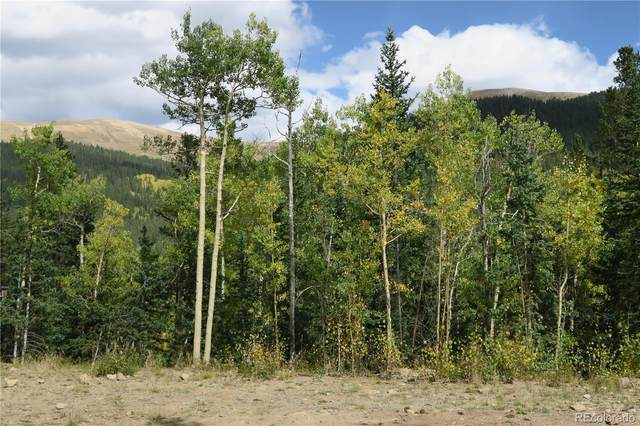 248 Cheyenne Road, Alma, CO 80420 (#6303851) :: The Griffith Home Team