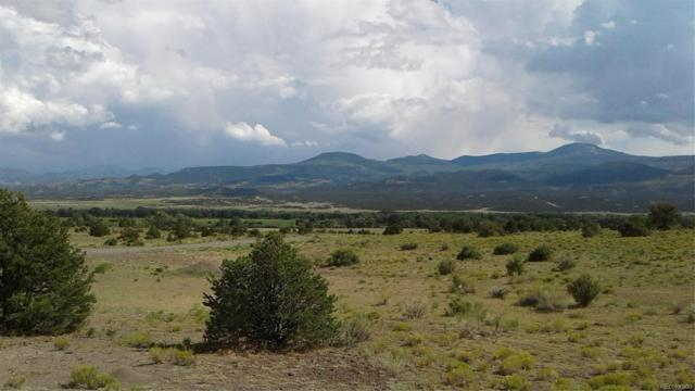871 W Pfieffer Loop, South Fork, CO 81154 (#6304974) :: The DeGrood Team