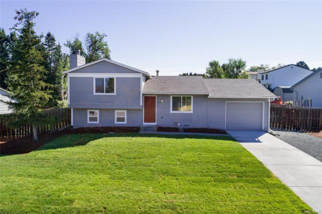 11184 Donley Drive, Parker, CO 80138 (#6305278) :: Colorado Team Real Estate