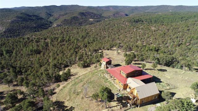 31300 Timber Canyon Trail, Trinidad, CO 81082 (#6305599) :: Bring Home Denver with Keller Williams Downtown Realty LLC