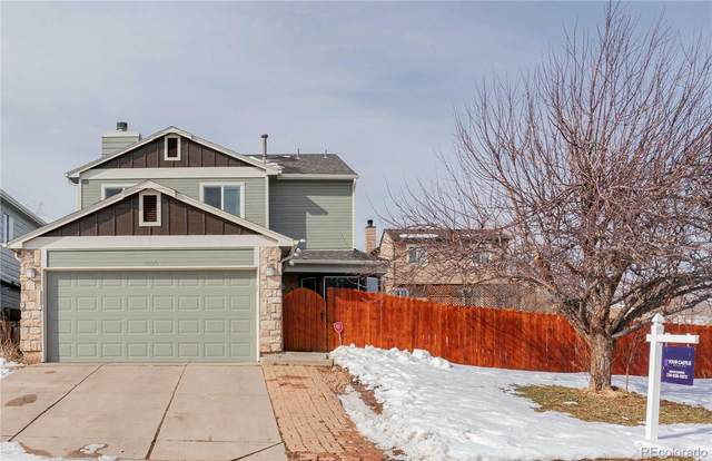 7923 Kyle Way, Littleton, CO 80125 (#6310410) :: HergGroup Denver