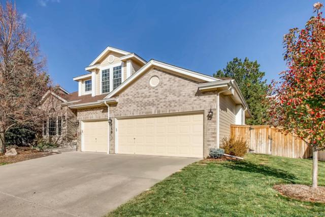 258 Sylvestor Place, Highlands Ranch, CO 80129 (#6316048) :: The Heyl Group at Keller Williams