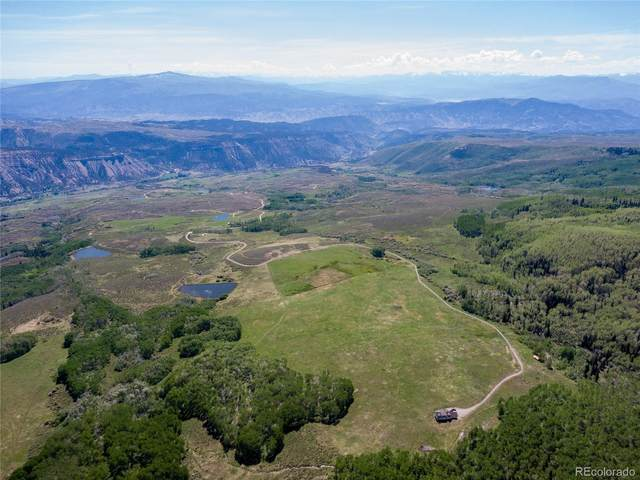 3450 County Road 151, Sweetwater, CO 81637 (#6317833) :: The Gilbert Group