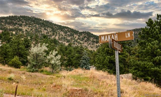 148 Makah Lane, Lyons, CO 80540 (MLS #6317850) :: 8z Real Estate