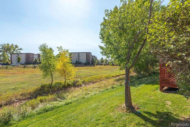 813 Chetwood Court, Fort Collins, CO 80526 (MLS #6317922) :: 8z Real Estate