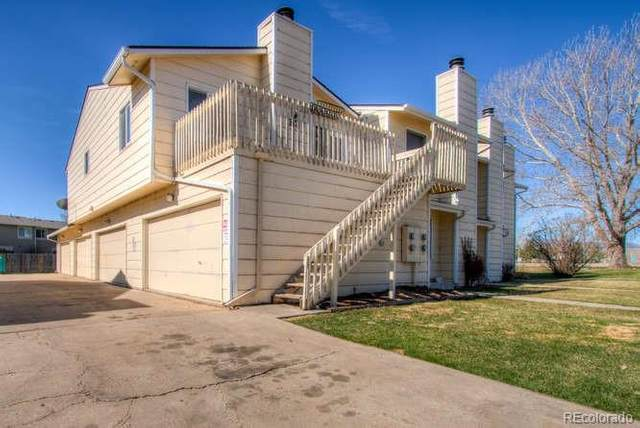 313 Butch Cassidy Drive, Fort Collins, CO 80524 (#6321077) :: Mile High Luxury Real Estate