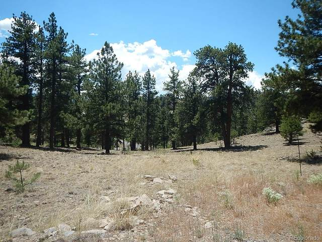 527 Church Creek Drive, South Fork, CO 81154 (#6321491) :: The Healey Group