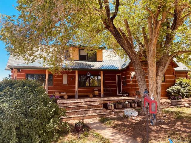 4784 County Road 312, New Castle, CO 81647 (#6325642) :: The DeGrood Team