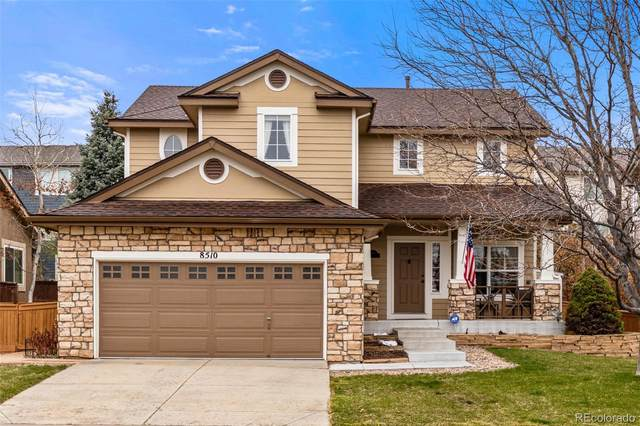 8510 W Cannes Drive, Littleton, CO 80127 (#6326092) :: The Dixon Group