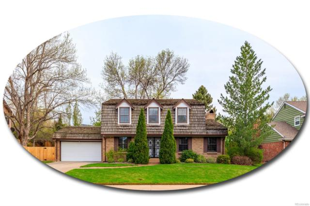 7046 S Cook Way, Centennial, CO 80122 (#6328731) :: Wisdom Real Estate