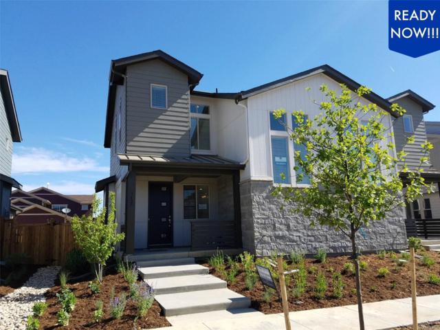 9427 E 58th Place, Denver, CO 80238 (#6330003) :: Wisdom Real Estate