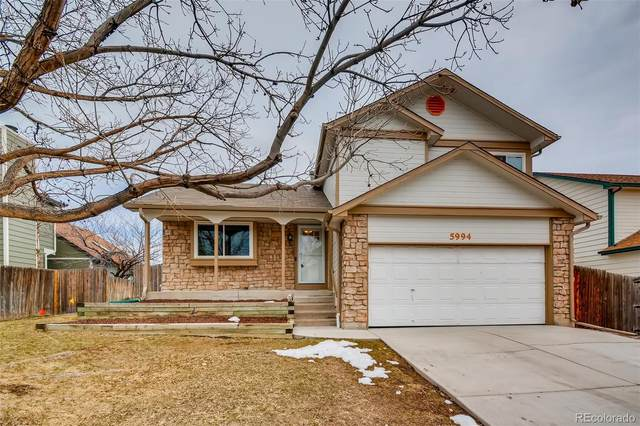 5994 S Parfet Street, Littleton, CO 80127 (#6330237) :: The Harling Team @ HomeSmart