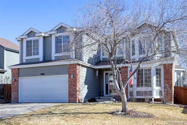 9969 Silver Maple Road, Highlands Ranch, CO 80129 (#6334319) :: The Dixon Group